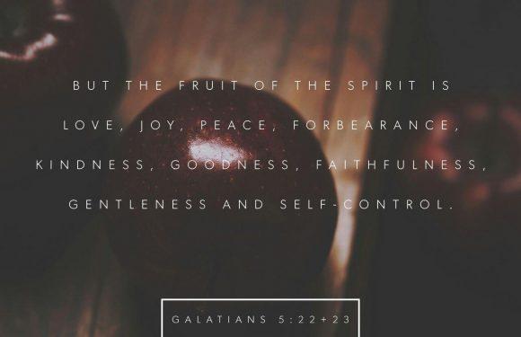 Galatians: 5:22-23