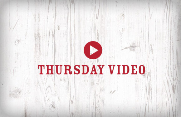 Thursday Video